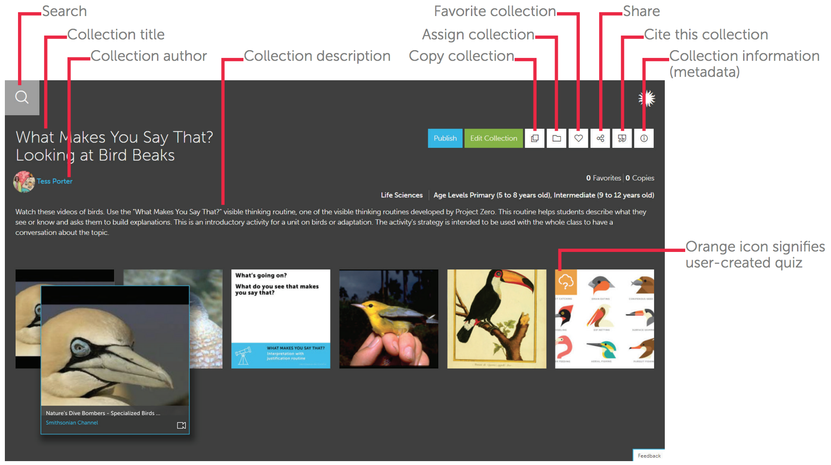 This user-created teaching collection, What Makes You Say That? Looking at Bird Beaks, includes videos, images, a thinking routine, and a quiz. When a user hovers over each resource, he sees its title, source, and media type. Clicking on a resource opens it to show additional information.